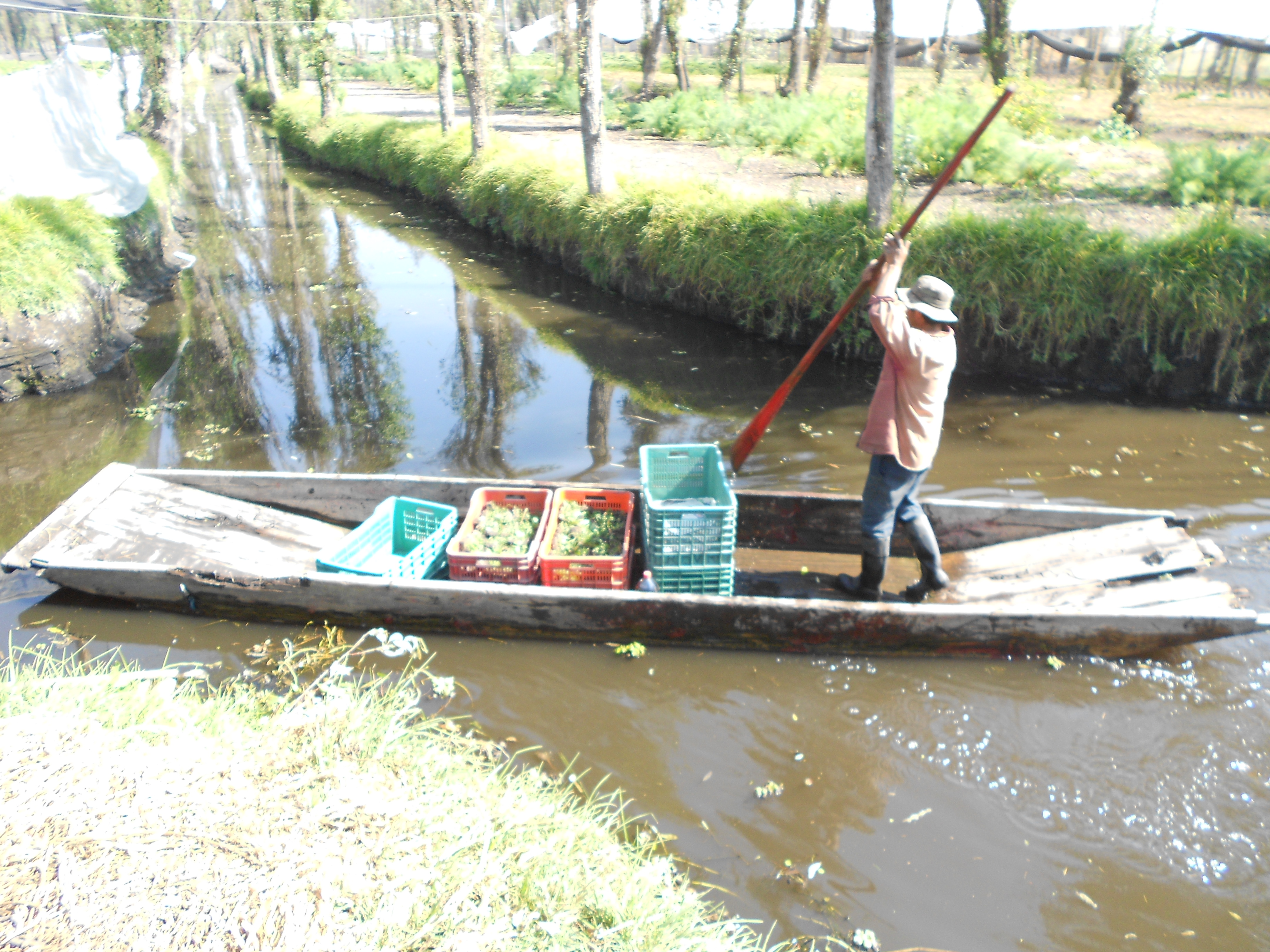 Mexico S Chinampas Wetlands Turned Into Gardens Fight Extinction Inter Press Service