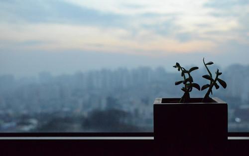 Over Seoul