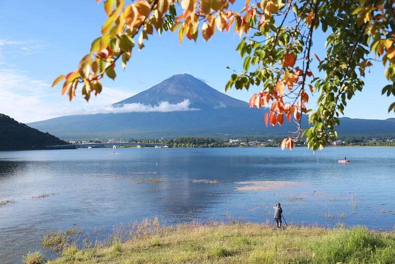 紅葉與富士山