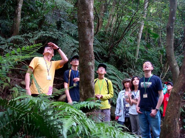 自然谷生態導覽,志工們認真的觀察自然生態的奇妙與奧妙之處。攝影/何玉文