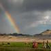 Rainbow in Mongolia