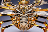 [Imagens] Máscara da Morte de Câncer Soul of Gold  24576011890_d44bd3b5ff_t