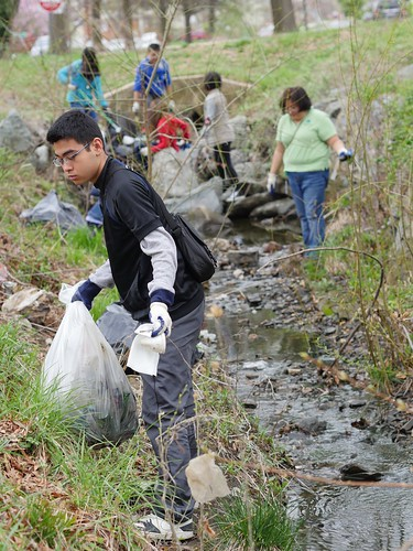 Bucknell Drive Stream Cleanup