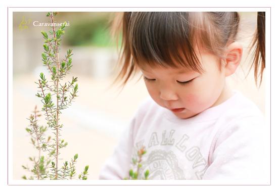 グリンピア春日井 愛知県春日井市 撮影会 子供 幼稚園入園記念 子供写真 自然な ナチュラル データ納品