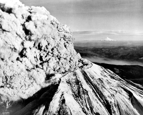 Black and white image shows the new summit of Mount St. Helens from the northwest. You can see part of the notch the landslide and lateral blast left. A huge eruption column is pouring out of the top and bending northward. The flanks of the summit are streaked gray and black. In the distance, Mount Hood is a white triangle - its pointy top is quite distinctive.