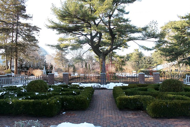The New York Botanical Garden in Winter