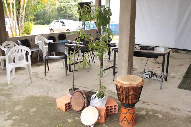 Tambores e Baobás