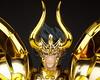 [Comentários] - Saint Cloth Myth EX - Soul of Gold Shura de Capricórnio - Página 3 26128724813_9687078182_t