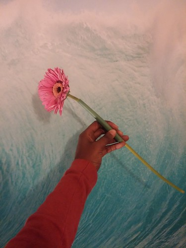 Dark brown skinned hand holding pink petaled flower in front of large wall painting of ocean