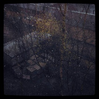 Snow, rain and emerging greenery, for #365days project, 105/365