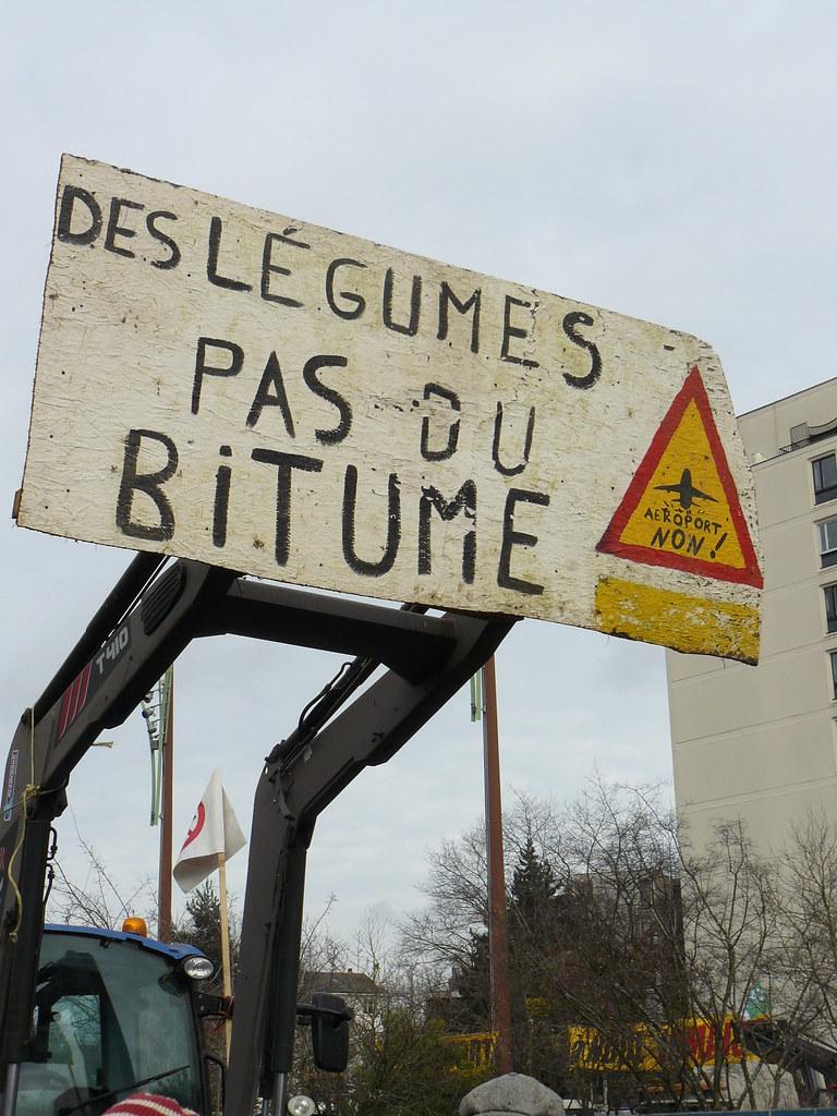 Manif contre l'aéroport #nddl à Rennes le 16 janvier 2016 Fl