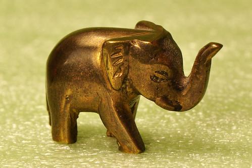 Makro Makrofotografie Fotografie Indoor-Fotographie Schlechtwetter-Indoorfotografie Januar 2016 Brigitte Stolle Mannheim Elefant Elefanten Metall Metallelefant Mini-Elefant