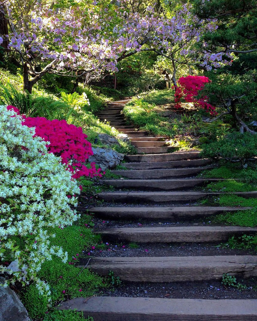 Elegant Pretty Garden Stairs | Gardens And Flowers Have A Way Of Briu2026 | Flickr