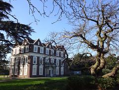 Picture of Locale Boston Manor