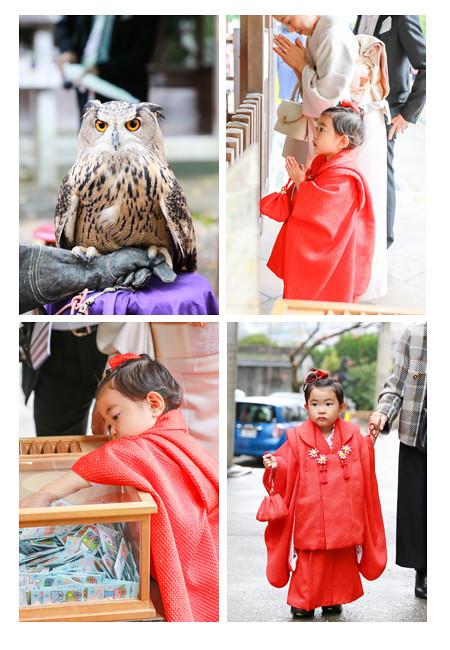 七五三写真,深川神社(愛知県瀬戸市),ロケーション撮影,出張撮影,着物,和装,自宅,おしゃれ,全データ