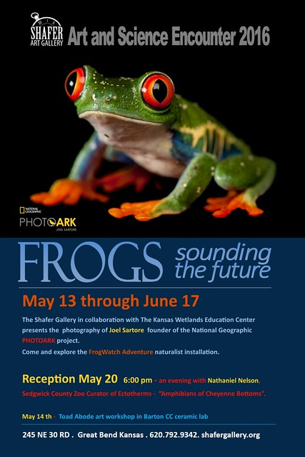Joel Satore frog exhibit at the Shafer Gallery