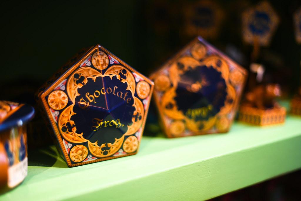 Wizarding World of Harry Potter 24