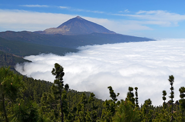 Mount Teide and Sea of Clouds, Tenerife
