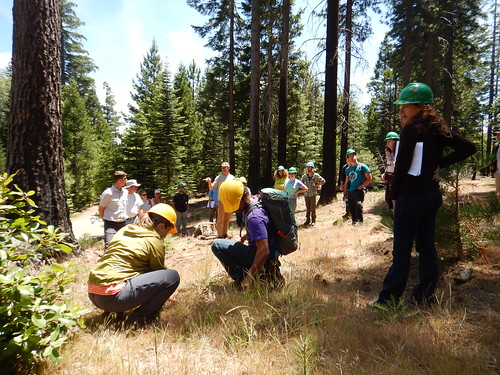 Researchers at the Forest Service's Pacific Southwest Research Station hosting a two-day field workshop