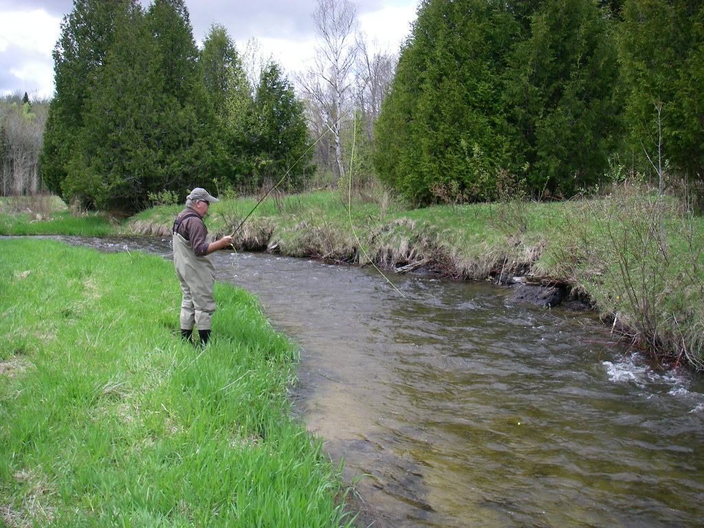 Ontario 39 s best trout and steelhead rivers for Small fishing sponsors