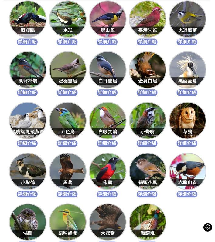 24種候選鳥類。圖片來源:華航飛行大使票選活動官網截圖