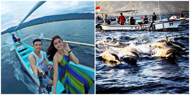 17-lovina-dolphins-via-jrschrijver,-ravibawasha