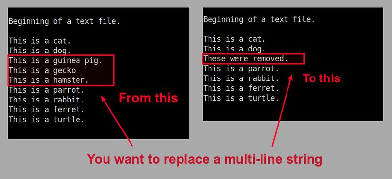 How to search and replace a multi-line string in a file