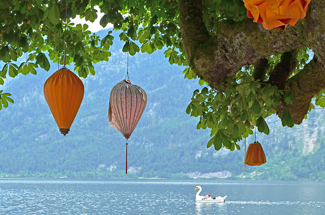 Chinese Lanterns and Swan Boat, Hallstatt, Austria