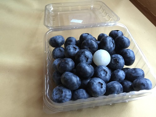 Berry impact recording device (BIRD) with blueberries