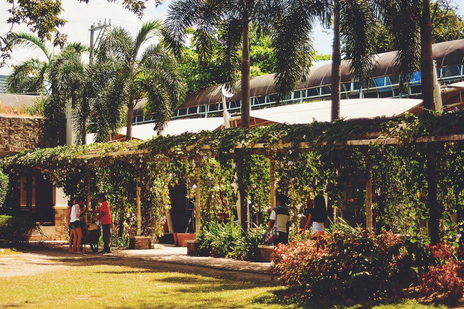 Pasig: Near the Riverbanks – Pusang Gala
