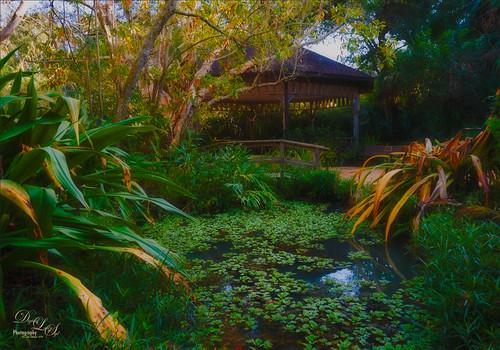 Image of the Memorial Gardens, Ormond Beach, Florida