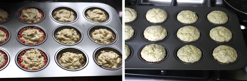 24833846500 22ce39eab6 b - Getting personal with these Lemon Poppyseed Muffins
