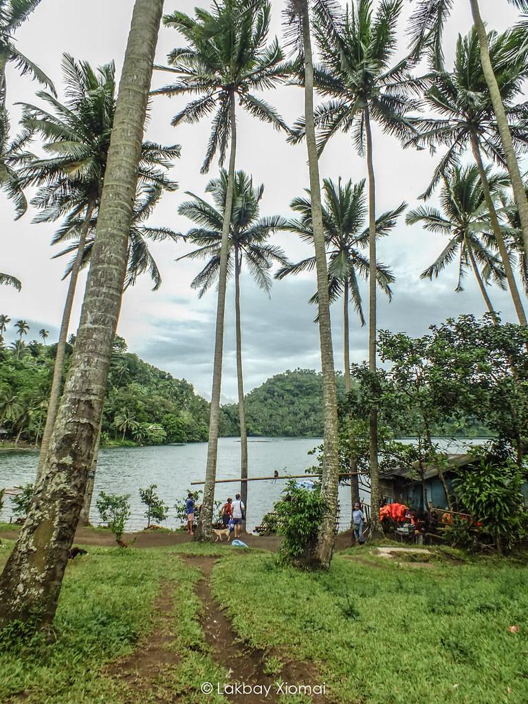 Lakbay Xiomai | San Pablo, Laguna - Pandin Lake - coconuts