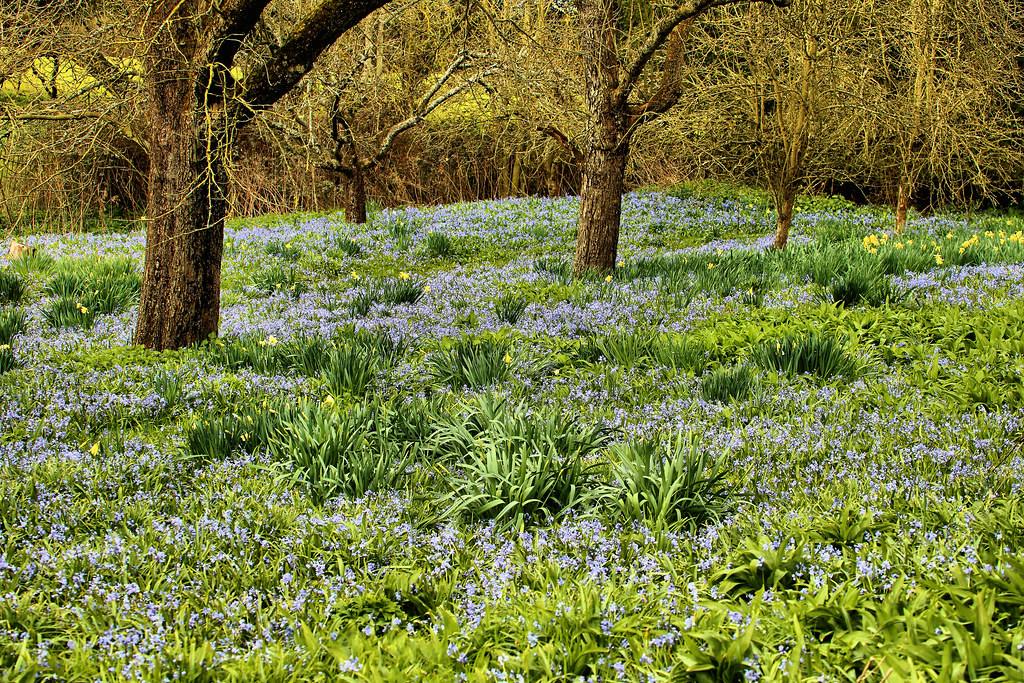 30 Lovely Landscape Gardener Jobs Hertfordshire U2013 Izvipi.com