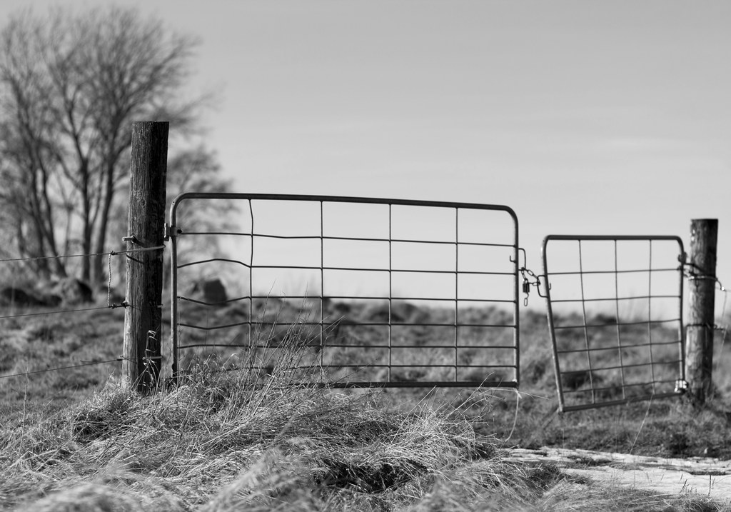 Mind the cow dung   Locked gates at the old Kapp Ekeby road …   Flickr