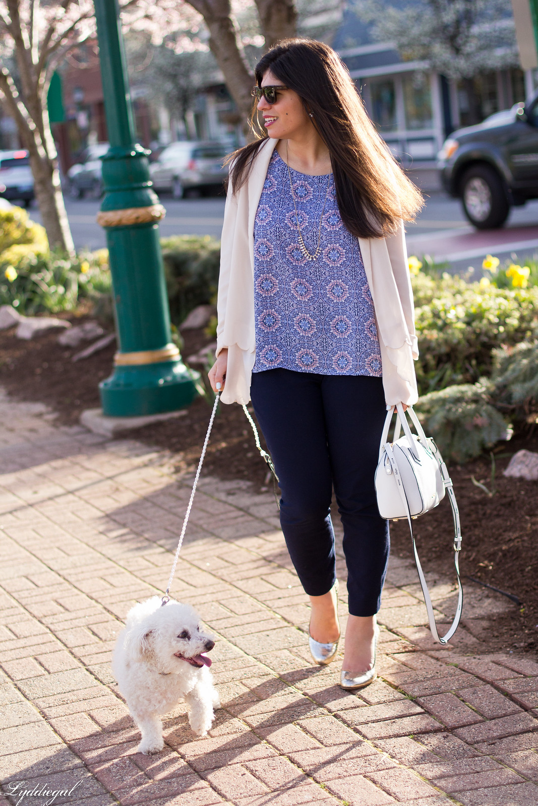 scalloped blazer, printed tank, navy pants, dog-7.jpg