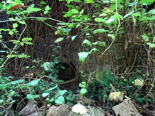 Mur du fond de l'ancien moulin