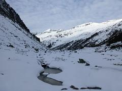 Bach unter Schnee