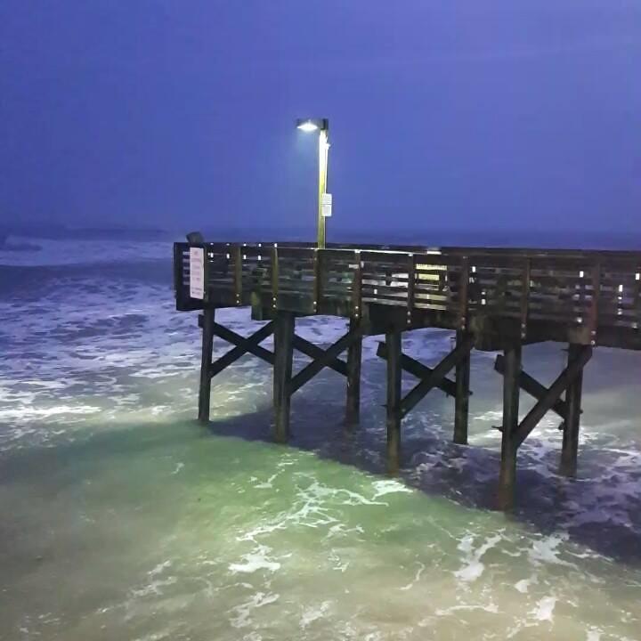 Galveston tx texas fishing pier for Galveston fishing pier report