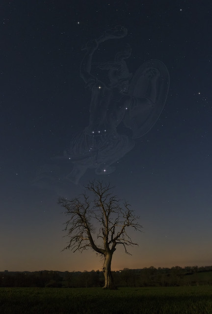 Orion et son arbre - EOS760d - Samyang16mm_20160323-b