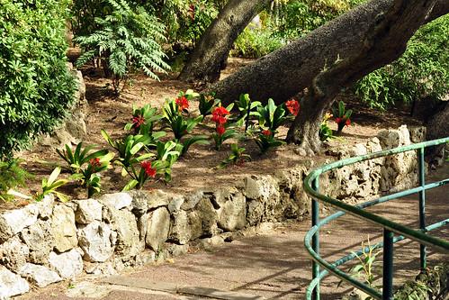 Monaco, im März 2016: Der Garten St. Martin (Jardin Saint-Martin) ist auf einem Felsen gelegen; die Wege schlängeln sich hübsch am Gebirgskamm entlang. Von vielen Stellen aus hat man einem Blick aufs Meer. Fotos und Collagen: Brigitte Stolle März 2016