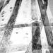 tracks | holcombe brook
