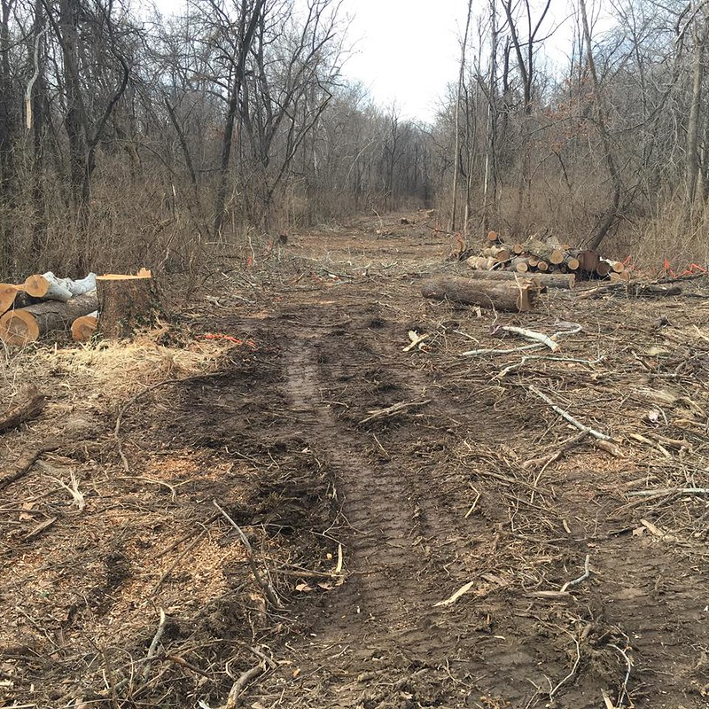 MIDKIFF MAYDAY!  City closes deforested MKT Trail to build student apartment sewers
