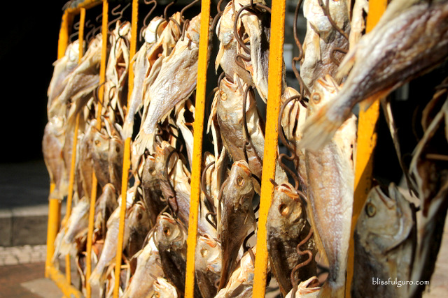 Macau Dried Fish