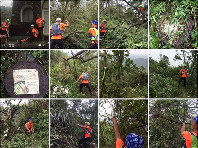 為越野賽清理沿途風倒木及植被。圖片來源:網路截圖