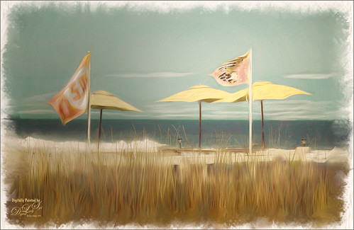 Image of Flags and Umbrellas at Flagler Beach, Florida