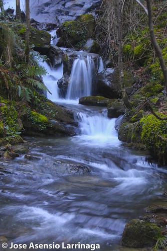 Parque Natural de Gorbeia #Orozko #DePaseoConLarri #Flickr -2919