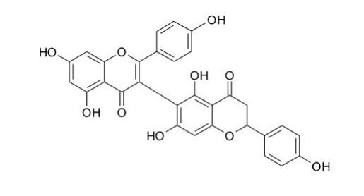 Loniceraflavone化學結構,從裡白忍冬所分離出之新化合物,具有極佳的抑制黃嘌呤氧化酶活性。圖片提供者:王升陽