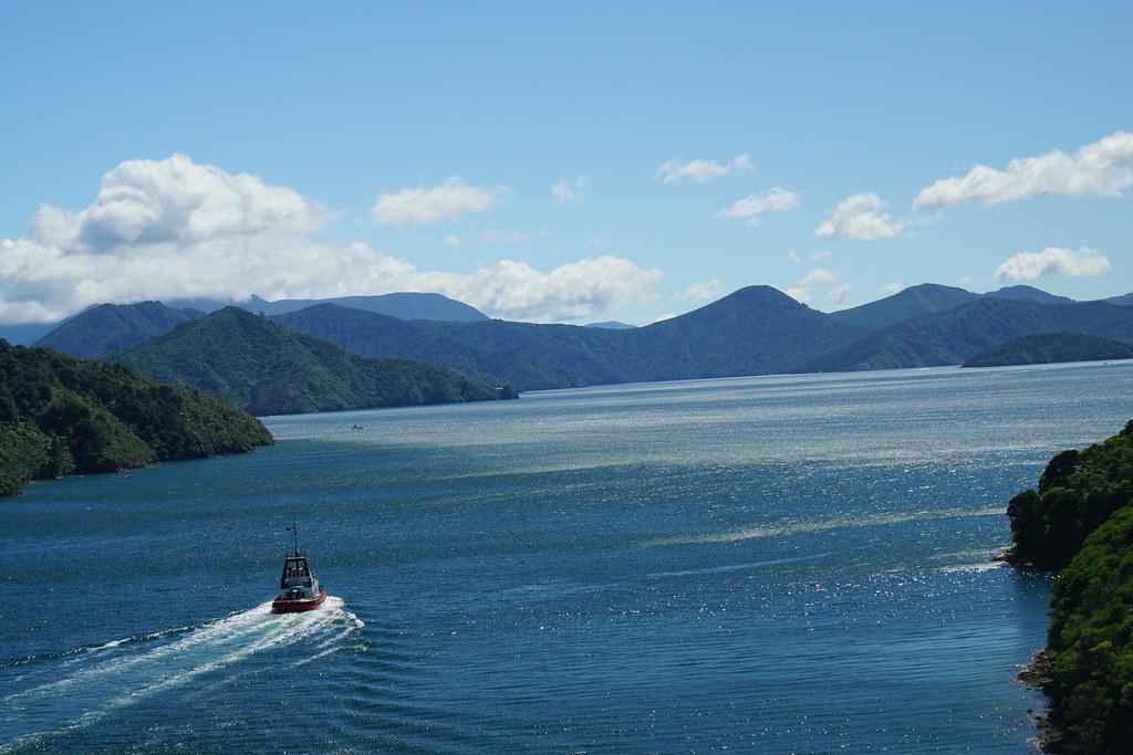 Picton new zealand landscape thinkrorbot flickr for Landscape jobs nz