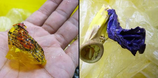 20160307_金沙灣發現死亡綠蠵龜胃中的糖果紙和氣球。圖片提供:台灣海洋大學研究團隊